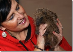 woman holding hedgehog
